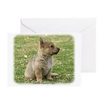 Swedish Vallhund Pup 9Y165D-131 Greeting Cards (Pk