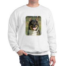 Swedish Vallhund 9K003D-10 Sweatshirt