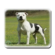 Staffordshire Bull Terrier 9F46D-14 Mousepad
