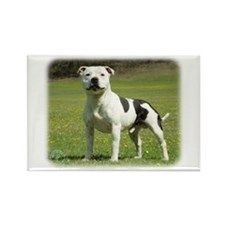 Staffordshire Bull Terrier 9F46D-14 Rectangle Magn