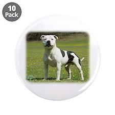 "Staffordshire Bull Terrier 9F46D-14 3.5"" Button (1"