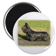 Skye Terrier 9C066D-16 Magnet
