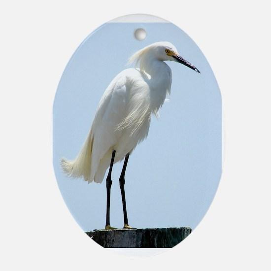 Great White Egret Ornament (Oval)