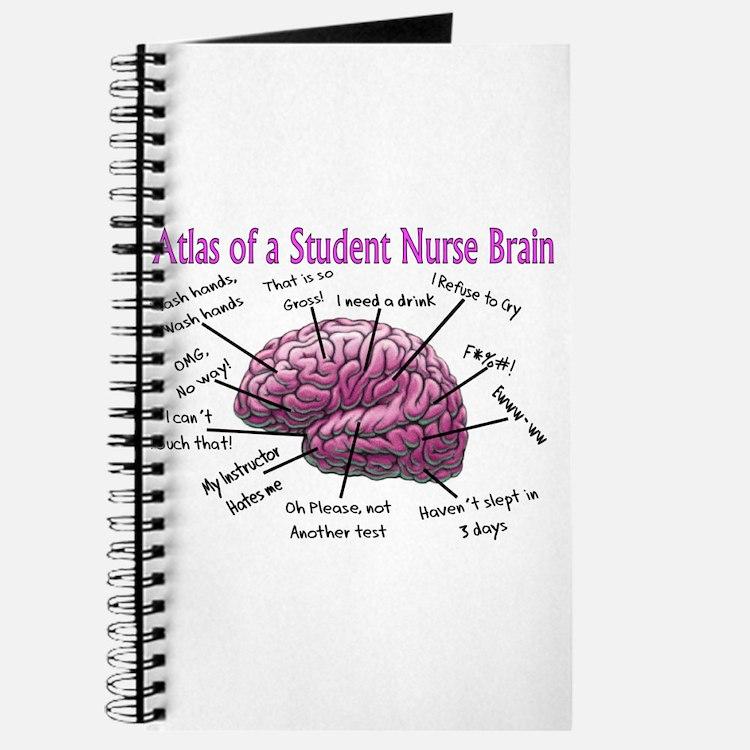 Nursing Student IV 2011 Journal