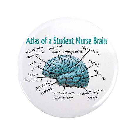"Nursing Student IV 2011 3.5"" Button"