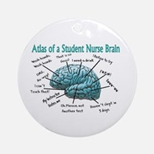 Nursing Student IV 2011 Ornament (Round)
