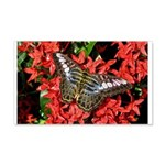 Butterfly on Red Flowers 22x14 Wall Peel