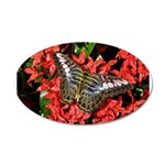 Butterfly on Red Flowers 22x14 Oval Wall Peel