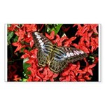 Butterfly on Red Flowers Sticker (Rectangle 50 pk)