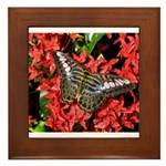 Butterfly on Red Flowers Framed Tile