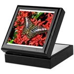 Butterfly on Red Flowers Keepsake Box