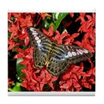 Butterfly on Red Flowers Tile Coaster