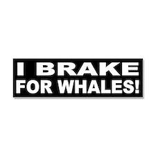 Unique Save whales Car Magnet 10 x 3