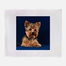 Yorkshire Terrier Puppy Throw Blanket