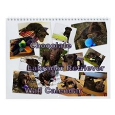 Chocolate Labrador Retriever Wall Calendar
