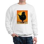 Schietti Modena Pigeon Sweatshirt