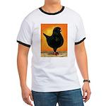 Schietti Modena Pigeon Ringer T