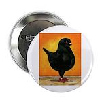 "Schietti Modena Pigeon 2.25"" Button (10 pack)"