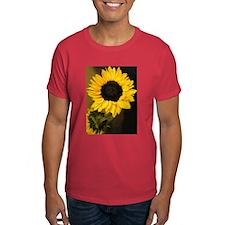 Sunshine of the Spirit T-Shirt