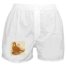 Yellow Frillback Pigeon Boxer Shorts