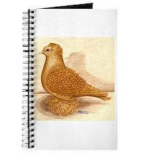 Yellow Frillback Pigeon Journal