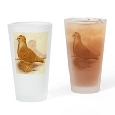 Yellow Frillback Pigeon Drinking Glass