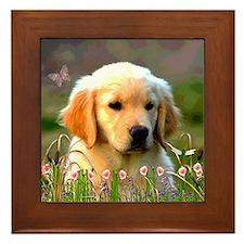 Austin, Retriever Puppy Framed Tile
