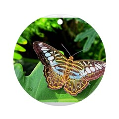 Butterfly on Green Foliage Ornament (Round)