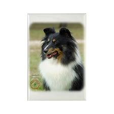 Shetland Sheepdog 9J090D-04 Rectangle Magnet
