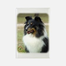 Shetland Sheepdog 9J090D-04 Rectangle Magnet