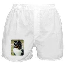 Shetland Sheepdog 9J090D-04 Boxer Shorts