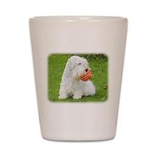 Sealeyham Terrier 8M003D-12 Shot Glass