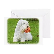 Sealeyham Terrier 8M003D-12 Greeting Card