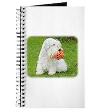 Sealeyham Terrier 8M003D-12 Journal