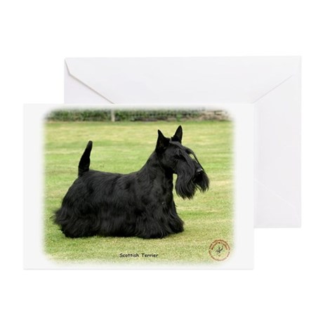 Scottish Terrier 9Y041D-035 Greeting Cards (Pk of