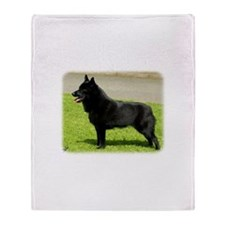 Schipperke 9W021D-022 Throw Blanket