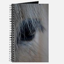Cool Horse eye Journal