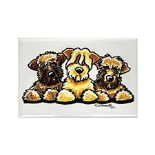 Wheaten Terrier Cartoon Rectangle Magnet