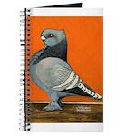 Blue Blondinette Pigeon Journal