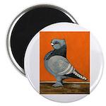 "Blue Blondinette Pigeon 2.25"" Magnet (100 pac"