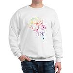 Rainbow Horse Flourish Sweatshirt