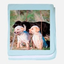 Labrador Puppies baby blanket