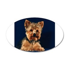 Yorkshire Terrier Puppy 22x14 Oval Wall Peel