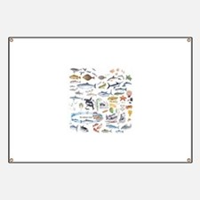 Funny Fishing lures Banner