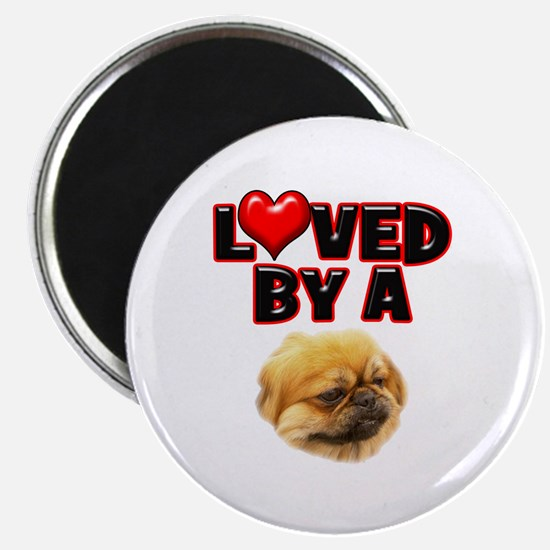 Loved by a Pekingnese Magnet