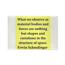 Erwin Schrodinger quotes Rectangle Magnet
