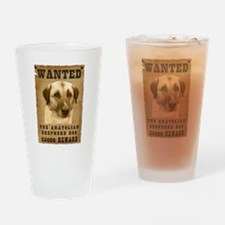 """Wanted"" Anatolian Shepherd D Drinking G"