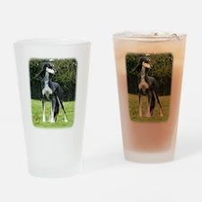 Saluki 8R012D-14 Drinking Glass