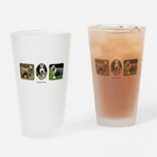 Bearded Collies Drinking Glass