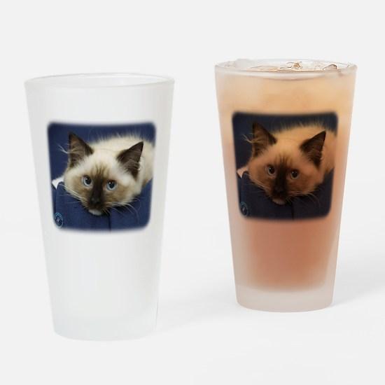 Ragdoll Cat 9W082D-020 Drinking Glass